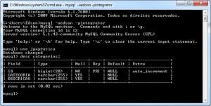 A tabela gerada no MySQL