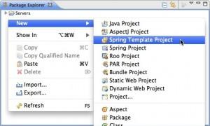 Figura 1 – Iniciando a criação de um projeto modelo utilizando Spring MVC